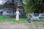 scarecrows-5149.jpg
