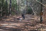 dog-sled-races-6441.jpg