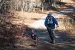 dog-sled-races-6509.jpg
